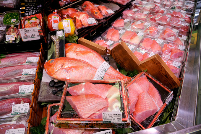 沼津港から水揚げされた魚